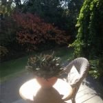 Winter sun on the B&B verandah